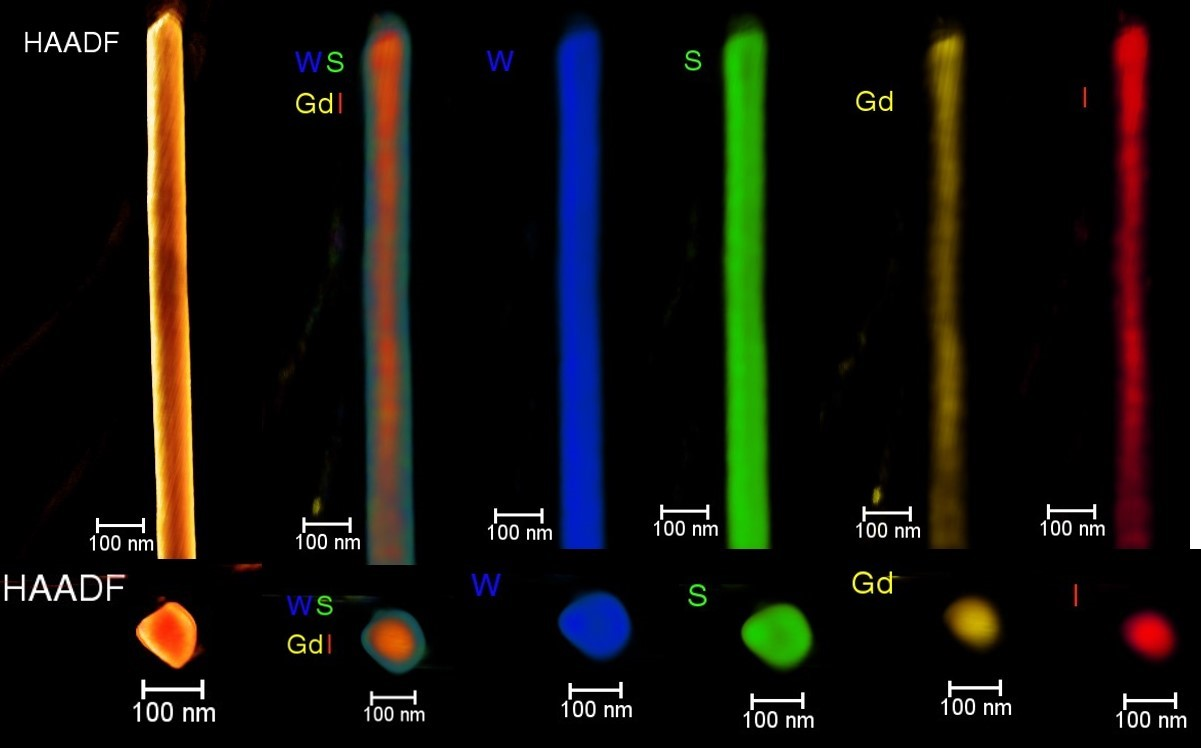 Volume rendering of HAADF-STEM and EDS tomograms of GdI3@WS2 nanotube. (a) Nanotube positioned vertically. From left to right, HAADF-STEM tomogram, combined tomograms of each element and individual elemental tomograms are given. (b) Cross-sectional view of the nanotube. The elements are color coded as blue (W), green (S), yellow (Gd) and red (I).